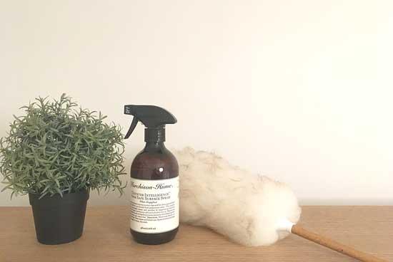 観葉植物・フェイクグリーンをクエン酸で掃除