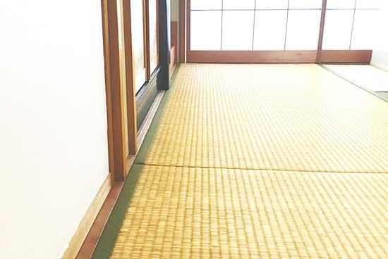 和室の畳をパストリーゼで掃除